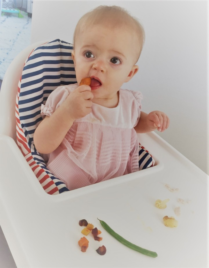 Our Baby Led Weaning Journey